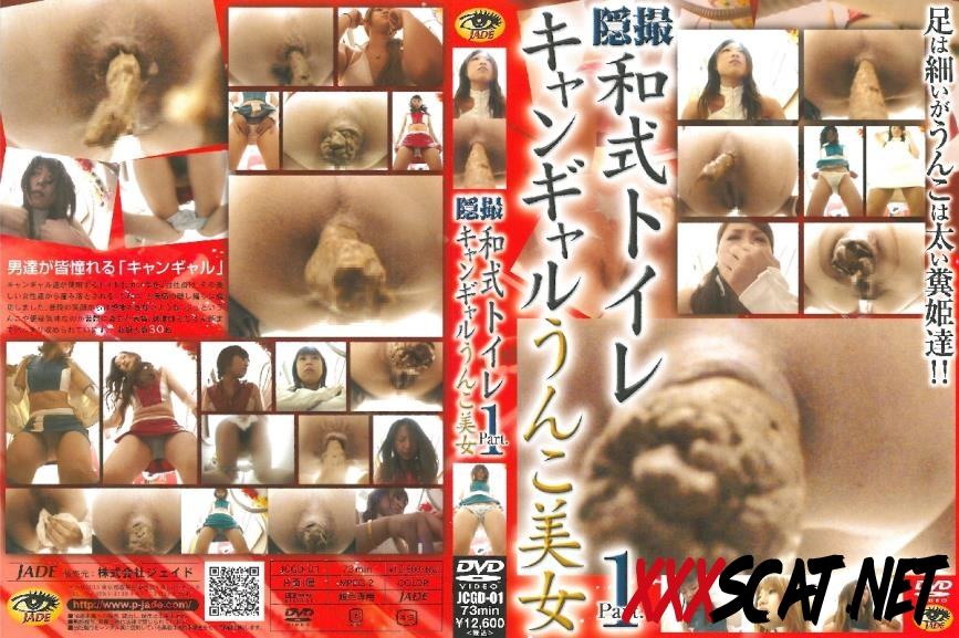 JCGD-01 Shitting girls トイレ(盗撮) スカトロ Japanese Style Restroom 2018 [123.0585_JCGD-01] (SD)