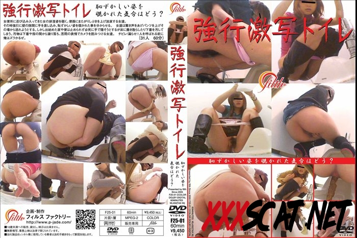F25-01 強行激写トイレ Defecation in the Toilet With a Hidden Camera 2018 [082.0506_F25-01] (SD)