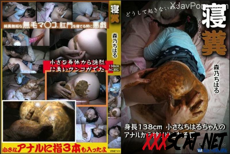 [VRNET-013] Feces Chiharu 最小スリーピング Urination Scat 2018 [137.VRNET-013] (SD)