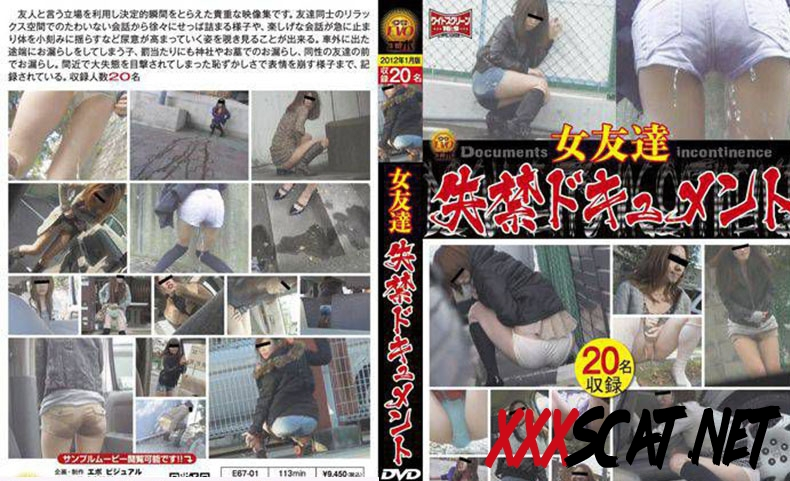 E67-01 女友達 失禁ドキュメント Friend Long Fed in the Toilet 2019 [3.1583_E67-01] (SD)