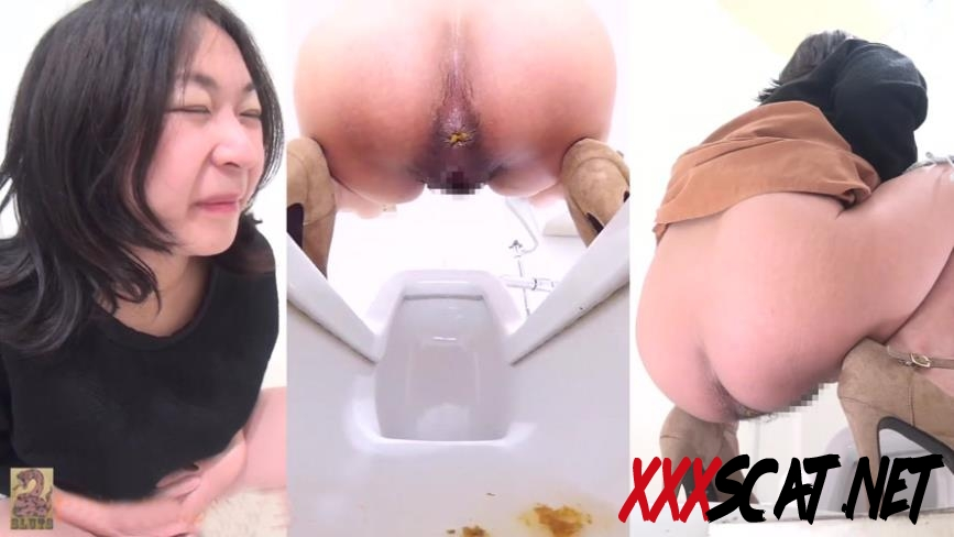BFSR-182 Public Toilet Hidden Camera Watching Shit トイレでうんちする女性 2019 [2.1790_BFSR-182] (FullHD)