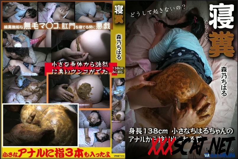 VRNET-013 Sleeping girls defecation and anal masturbation 2018 [063.1475_VRNET-013] (SD)
